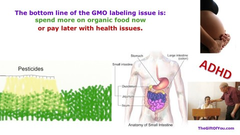 GMO Labeling 2